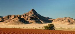 Kahalari-halvørkenen i Botswana