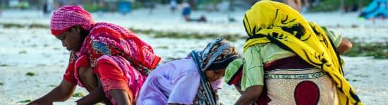 Befolkningen på Zanzibar er venlige og imødekommende