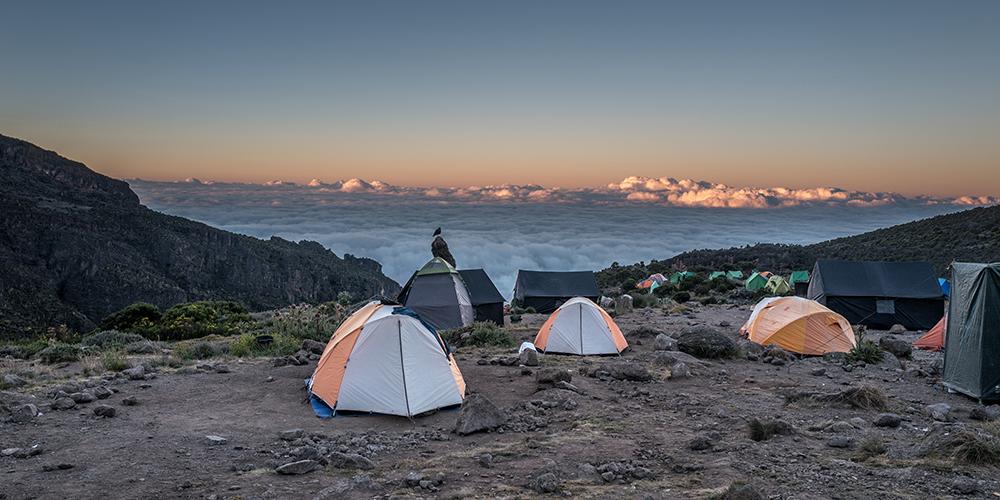 Afrika Kilimanjaros Tag