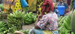 Indkøbsmuligheder på marked i Tanzania