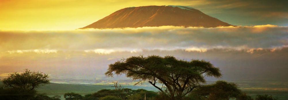 Tanzania-safari-rejse-ny